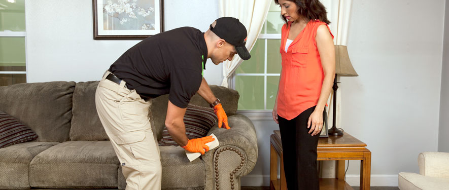 Norman, OK carpet upholstery cleaning