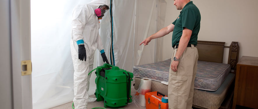 Norman, OK mold removal process